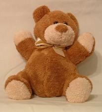 tb_brown_bearsmall